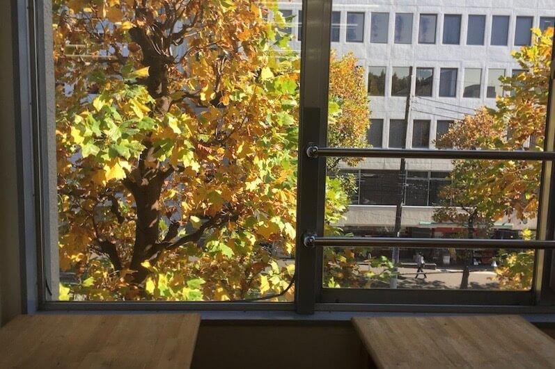 自習席の窓から見る秋の風景