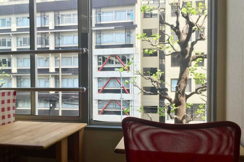 自習席の窓から見る春の風景