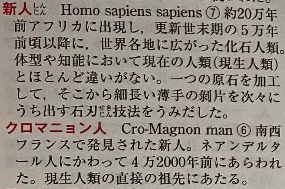 世界史用語種の単語の構成